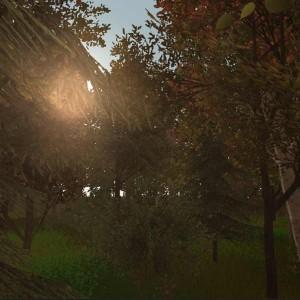 treescreen1